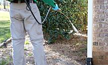 Perimeter Pest Control